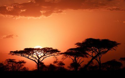 שקיעה בסרנגטי בטנזניה - צילום: יואל שליין