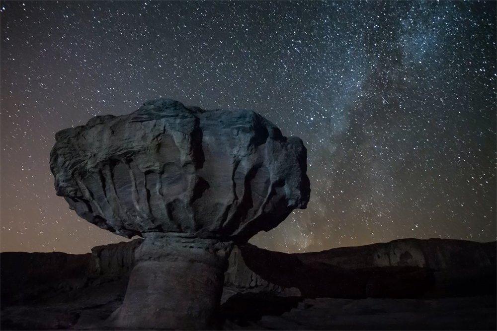 הפטריה פארק תמנע - צילום: תומר רצאבי