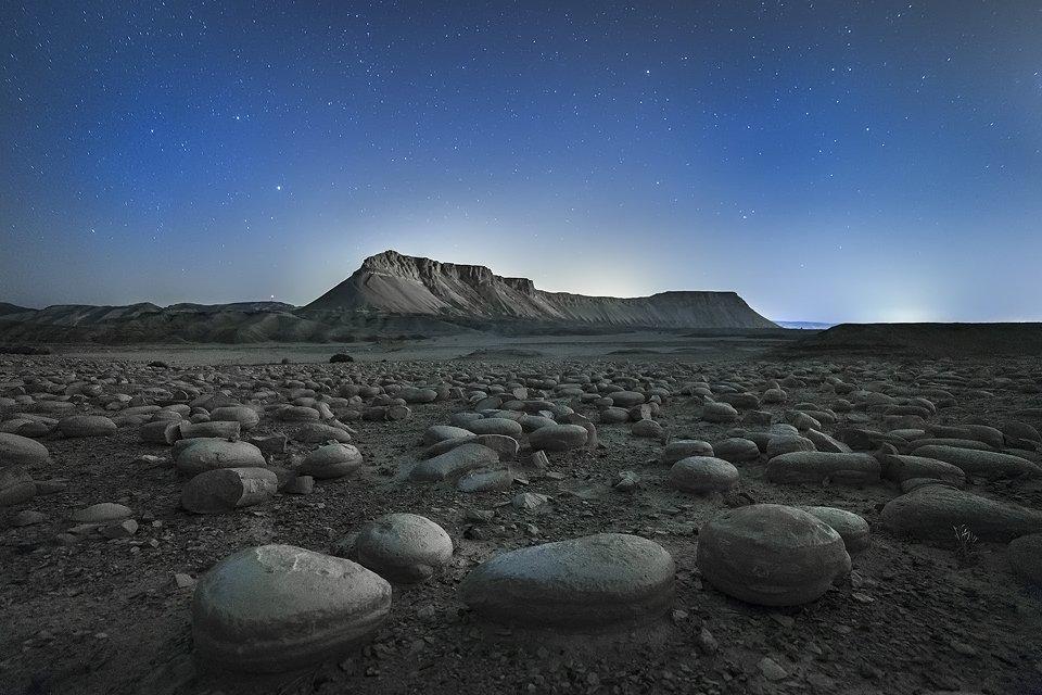 הר צין ושדה הבולבוסים, צילום: תומר רצאבי - Wild Travel