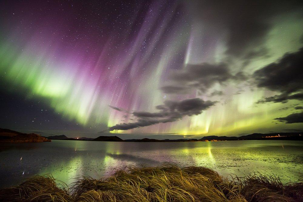 זוהר צפוני באיסלנד - Wild Travel, צילום: יואל שליין