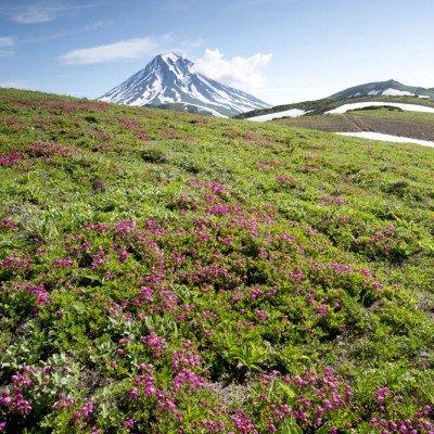 קמצ'טקה - Wild Travell, צילום: ינאי בונה