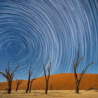 נמיביה - Wild Travel