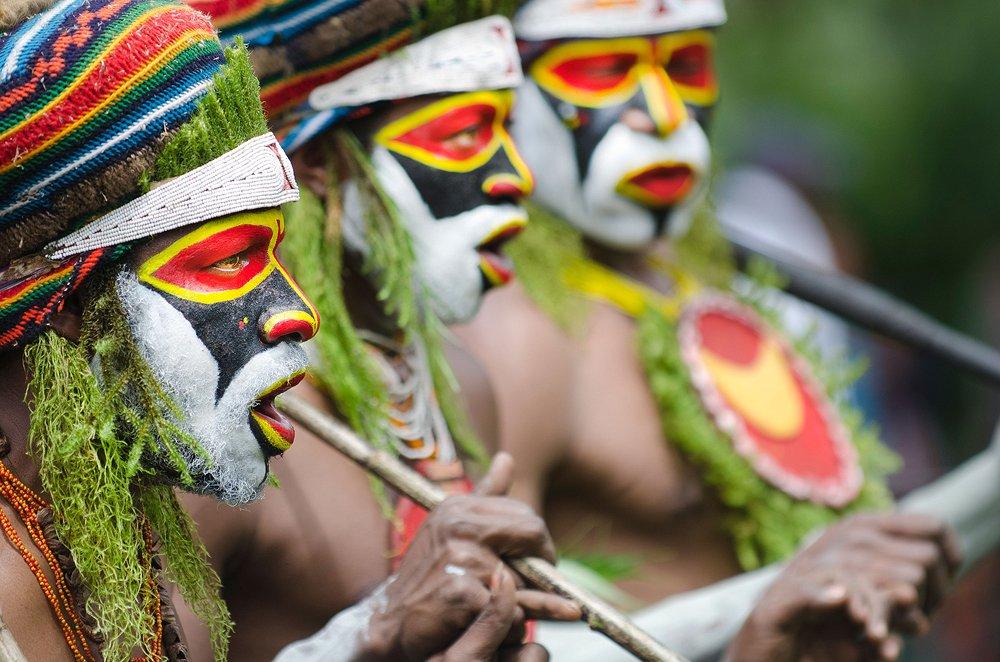 פפואה ניו גינאה - Wild Travel