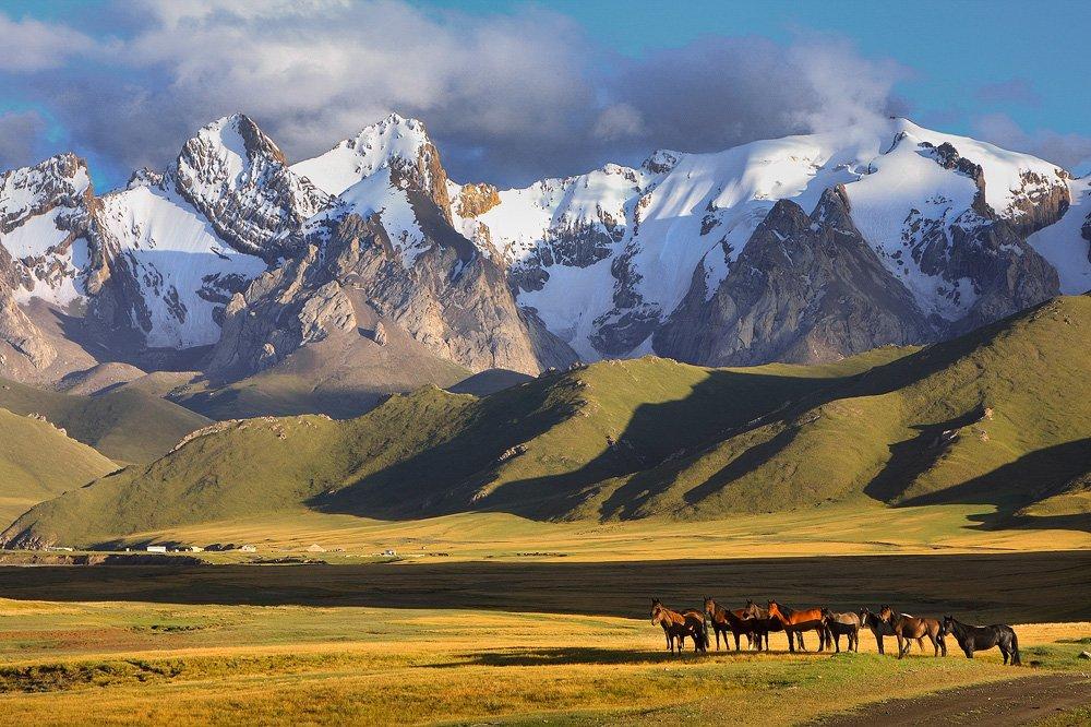 טיול לקירגיזסטן - Wild Travel