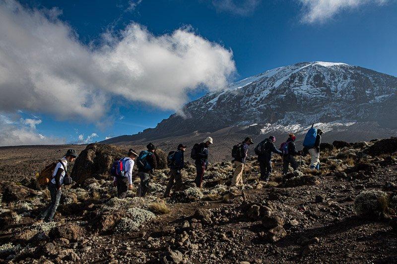 מסלול מצ'אמה לפסגת הקילימנג'רו - Wild Travel