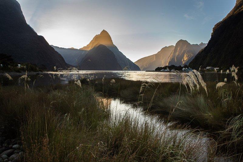 Wild Travel - מילפורד סאונד בניו זילנד