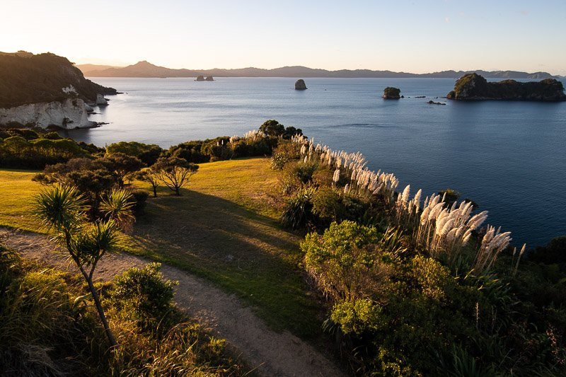 Wild Travel - השביל המוביל לקטדרל קוב, האי הצפוני, ניו זילנד