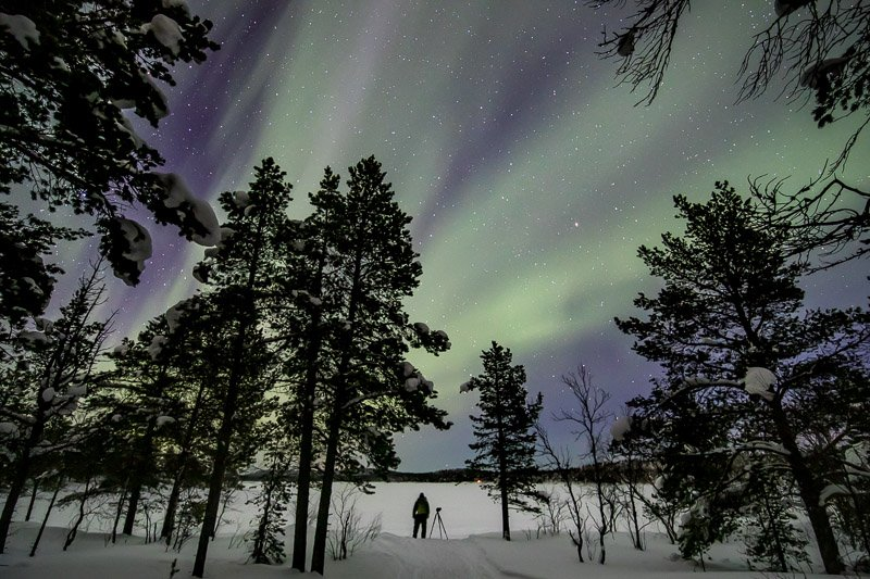 זוהר צפוני ביערות לפלנד - Wild Travel