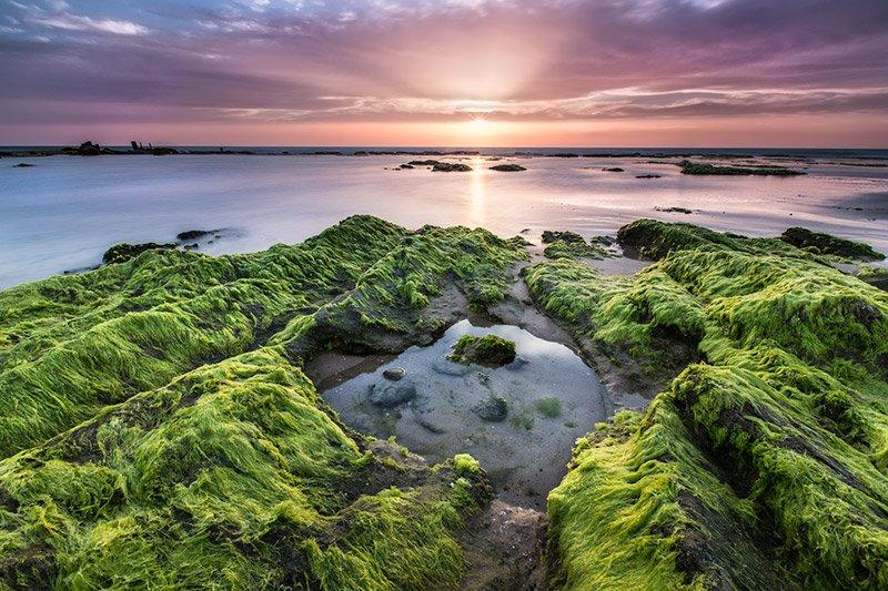 צילום שקיעה בחוף פלמחים - Wild Travel