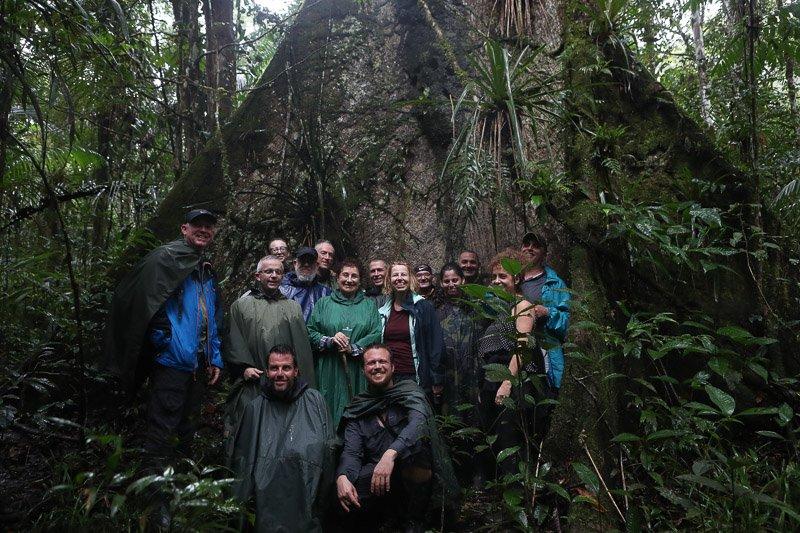 הקבוצה שלנו בעומק יער הגשם האמזוני - Wild Travel