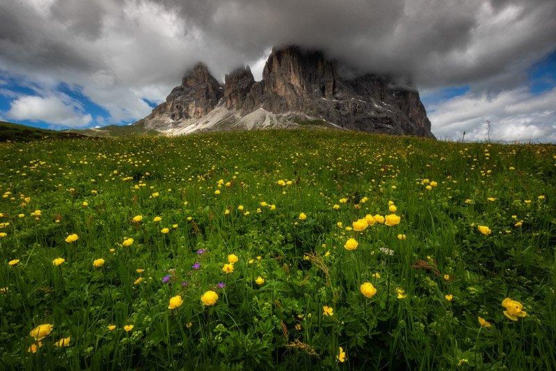 פאסו סלה, החלק האחורי של אלפ דה סיוסי, דולומיטים איטליה - Wild Travel