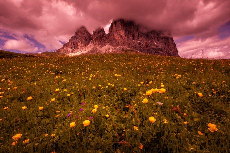 עריכת תמונות בלייטרום - דוגמה לשינוי גוון צבעים ב Color Grading | Wild Travel