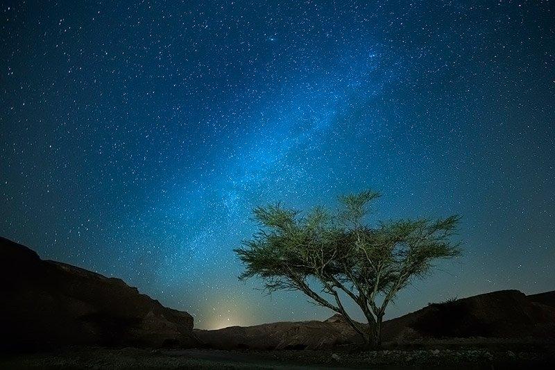 סדנת צילום עם ג'יפים במדבר יהודה - Wild Travel