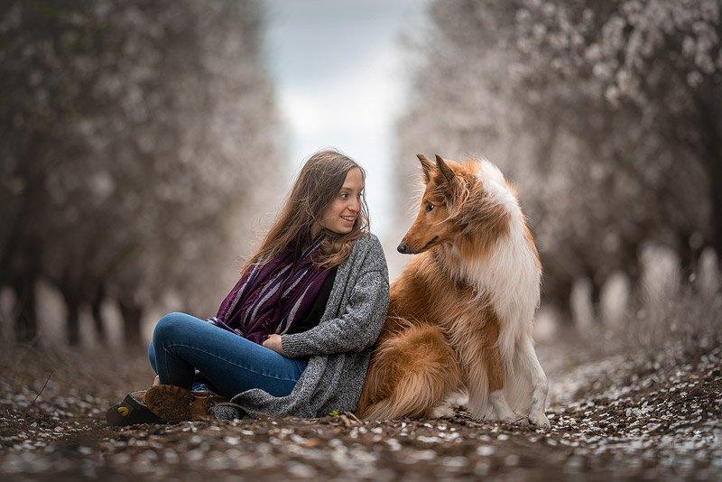 צילום כלבים בטבע מתוך קורס צילום כלבים עם מאיר גור - Wild Travel
