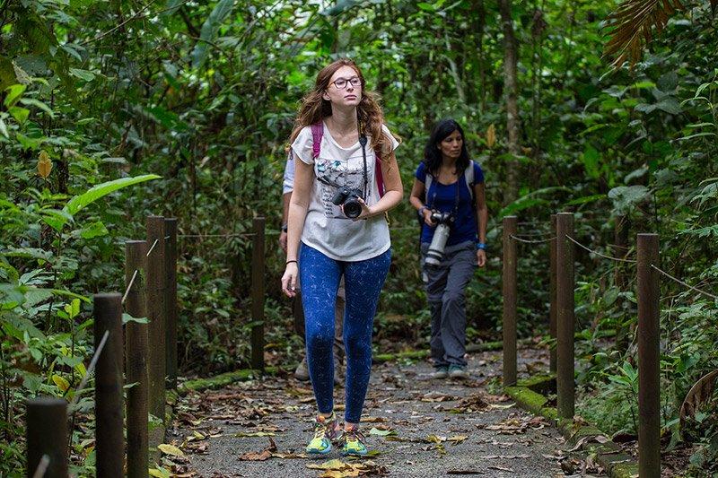 סיור ביער גשם בקוסטה ריקה - Wild Travel