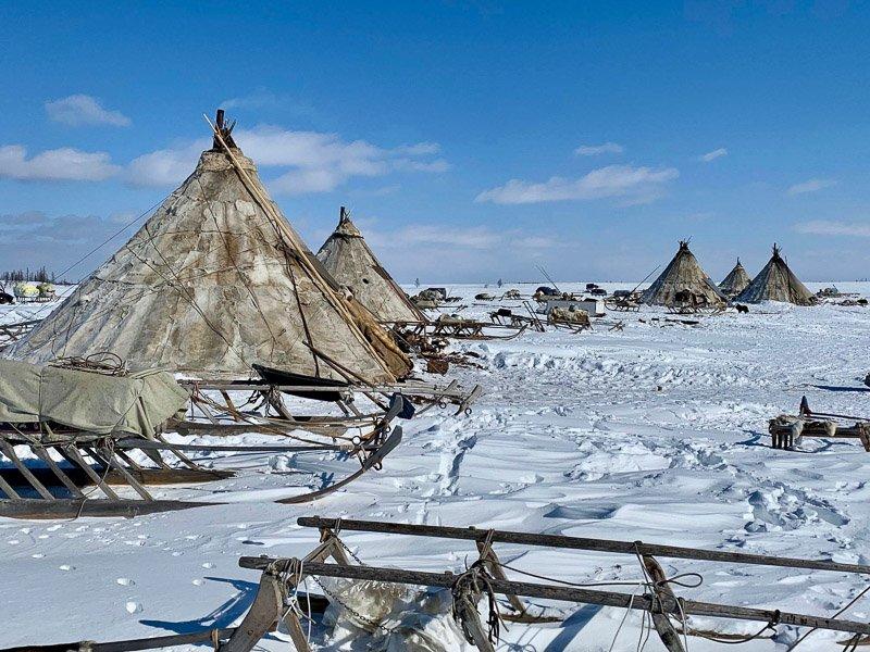 כפר שבט הננץ בצפון סיביר - Wild Travel