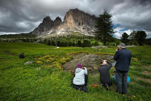 פאסו סלע, החלק האחורי של אלפ דה סיוסי, דולומיטים איטליה - Wild Travel