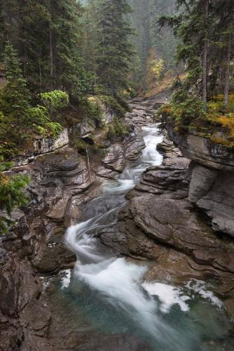 קניון מלין בשמורת ג'אספר, הרי הרוקי הקנדיים, קנדה - Wild Travel