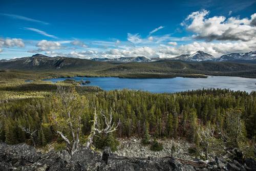 האגם ליד נק טסלי, קולומביה הבריטית, קנדה - Wild Travel
