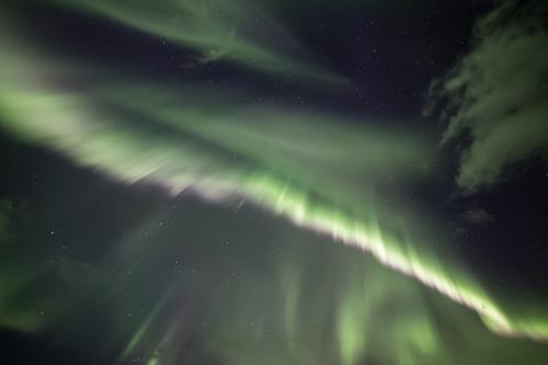 זוהר צפוני בצפון איסלנד - Wild Travel