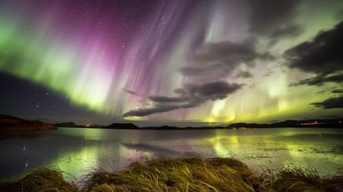 זוהר צפני עצמתי באגם מיווטן בצפון איסלנד - Wild Travel
