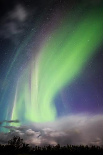 זוהר צפוני בדרום איסלנד - Wild Travel