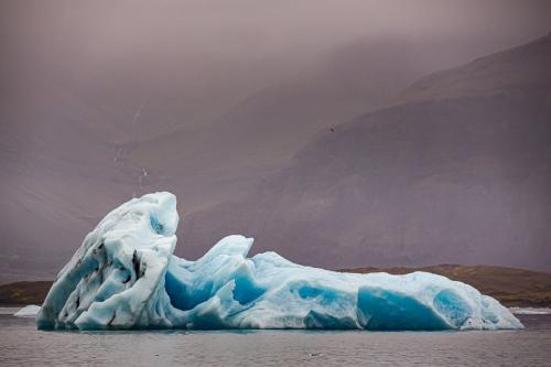 קרחונים צפים בלגונת הקרחונים בדרום איסלנד - Wild Travel
