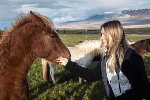 סוסים איסלנד עם חברי הקבוצה באיסלנד - Wild Travel