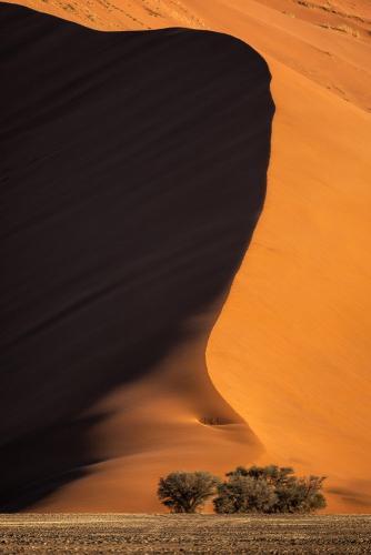 הדיונות של סוסוסוולי במדבר הנמיב, נמיביה - Wild Travel