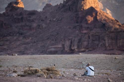 סדנת צילום טבע ונוף בפארק תמנע - Wild Travel