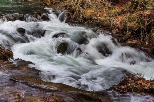 סדנת צילום טבע ברמת הגולן - Wild Travel