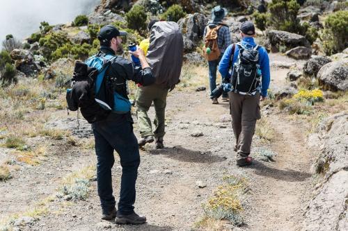 עולים למחנה שירה, דרך מצ'אמה - קילימנג'רו, טנזניה - Wild Travel
