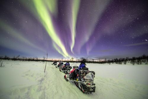 רכיבה על אופנועי שלג לאור הזוהר הצפוני בלפלנד - Wild Travel
