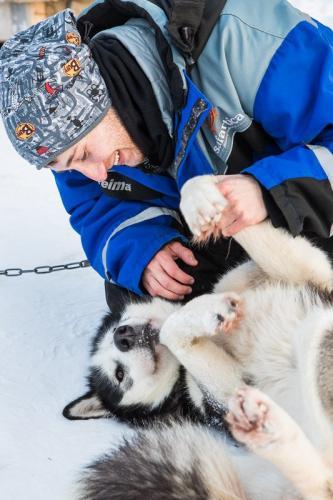 המטיילים משחקים עם כלבי האסקי בלפלנד - Wild Travel