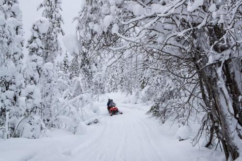 מסע אופנועי שלג מאילאס להאטה, לפלנד - Wild Travel