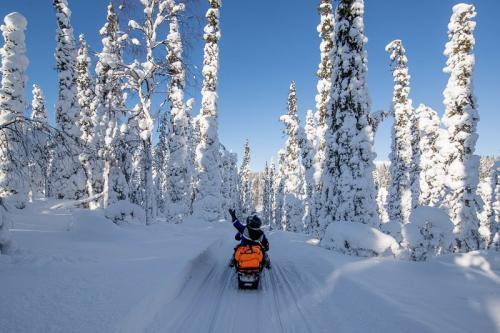 אופנוע שלג ביערות לפלנד המושלגים - Wild Travel