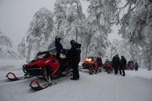 אופנועי שלג ביער מושלג ולצבוע בלבן, לפלנד - Wild Travel