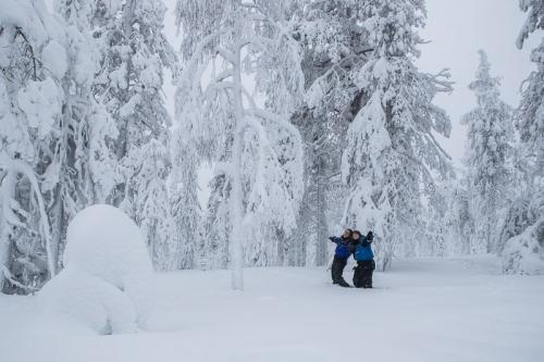 יער מושלג ולצבוע בלבן, לפלנד - Wild Travel