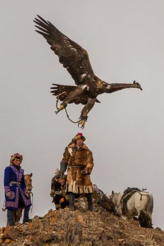 צייד קזחי משלח עיט בהרי האלטאי, מערב מונגוליה - Wild Travel