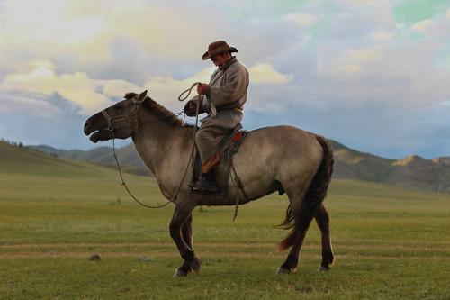 נוודים, מגדלי סוסים מונגולים עם אורגה בצפון מזרח מונגוליה - Wild Travel