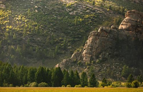 הפארק הלאומי טרלג' במרכז מונגוליה - Wild Travel