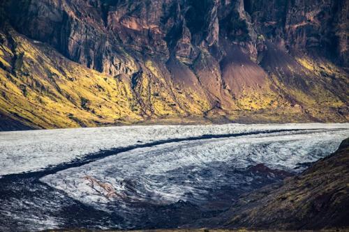 קרחון החזירים, סוינפליוקול - Wild Travel