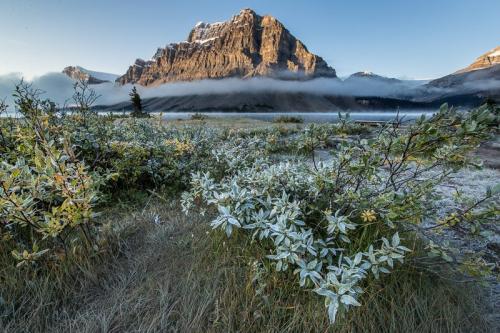 אגם בואו בשמורת באנף, הרי הרוקי הקנדיים, קנדה - Wild Travel