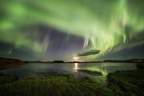 הזוהר הצפוני מעל אגם מיווטן בצפון איסלנד - Wild Travel