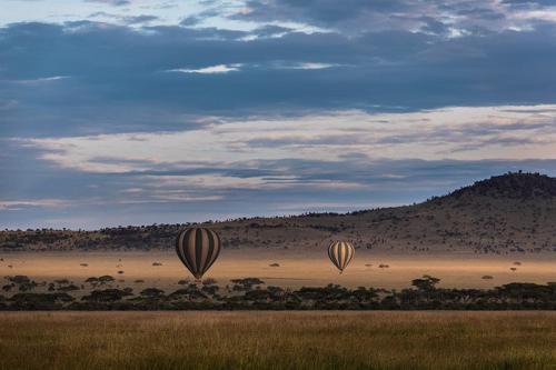כדורים פורחים מעל לסרנגטי, טנזניה - Wild Travel