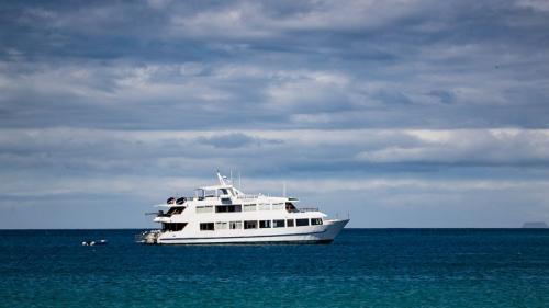 היכטה שלנו בלב ים, איי גלפגוס - Wild Travel
