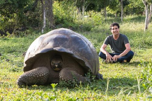 צבי ענק ליד המטיילים, איי גלפגוס - Wild Travel