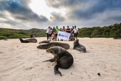 אריות ים ליד המטיילים, איי גלפגוס - Wild Travel