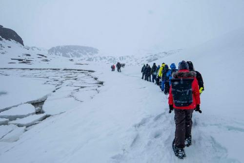הליכה עם נעלי שלג, שפיצברגן. צילום: יורם שפירר - Wild Travel