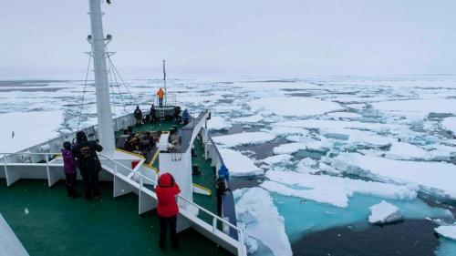 הפלגה בים הקרח הצפוני, שפיצברגן. צילום: יורם שפירר - Wild Travel